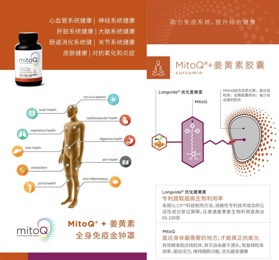 Mitoq姜黄素胶囊功效与作用?新西兰Mitoq是三无么?